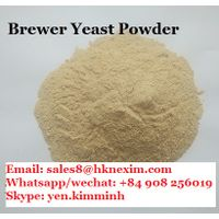 BREWERS YEAST POWDER - BEER YEAST RESIDUE