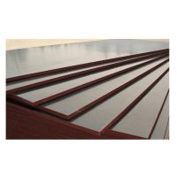 Hot sale Shandong one time hot press high quality best price 4'*8'1220*2440*18mm brown film faced pl