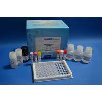 Tetracycline(TET) ELISA Test Kit