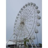 China 42m ferris wheel for sale
