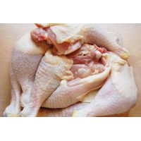 Quality Halal Whole Frozen Chicken available