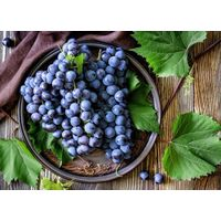 Grape Skin Extract powder 30% poluphenols