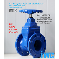 NON-RISING STEM, RESILIENT SEATED GATE VALVE, (DN40-800)