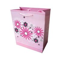 Exquisite Paper Bag Printing,Promotion Gift Bag Printing,Bag Printing Service