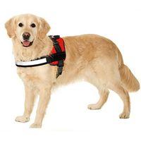 Basecent Sport Camera Dog/Cat Harness Chest Strap Belt Mount-BC211 thumbnail image