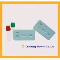 Quicking Ehrlichia Canis Ab Rapid Test