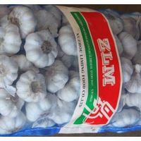 ZLM fresh garlic thumbnail image