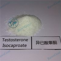 Testosterone Isocaproate Raw Powder CAS 15262-86-9 thumbnail image
