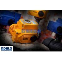 electric valve actuator thumbnail image