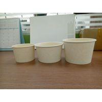 bagasse paper bowl