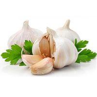 Garlic Extract Allicin& Alliin, Aged Garlic Extract, Garlic Extract Powder