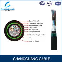 Outdoor Direct buried fiber optic cable 12 core 24 core optical cable Armored