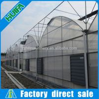 Multi-span Commercial Agricultural Greenhouse
