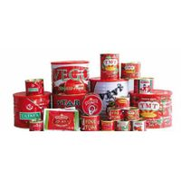 canned tomato paste 28-30% brix,tinned tomato paste