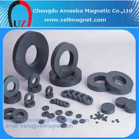 FB5N Ring Shape Ferrite Magnets