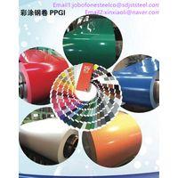 PRE-PAINTED STEEL COIL-PPGI PPGL coils