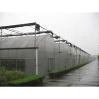Film Multi-Span Greenhouse