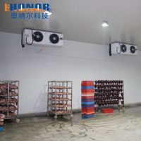 Fruit Vegetable and Meat Cold Storage Room