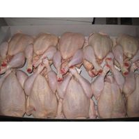 Quality Halal Frozen Whole Chicken