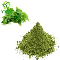 price per kg bulk macha green tea powder thumbnail image