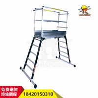 Manufacture multi-functional cheap aluminum ladder