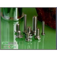 SS 304 Stainless Steel Bolts