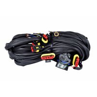 CNG/LPG ECU Kit- Wiring Harness