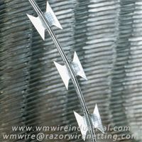 Concertina razor wire | High security fence --- WM Wire Industrial