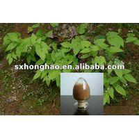 10%-20% Icariins Epimedium Extract thumbnail image