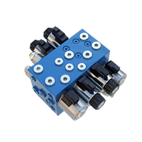 HCV10-00 Lifting platform control valve