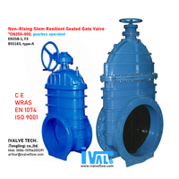 RESILIENT SEATED GATE VALVE, Top Flange (DN350-800)