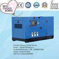 Weifang Ricardo diesel generator set