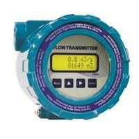 FNS210 Flow Transmitter