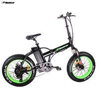 Electric Bike TDM20