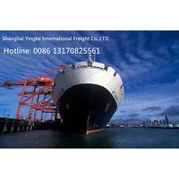 Reasonable Price Shanghai Shipping Forwarder to Australia by Sea
