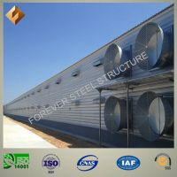 Large Span Light Steel Structure for Poultry
