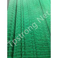 Polyethylene PE Net Customized Best Quality Good Price