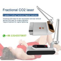 Portable Fractional CO2 laser skin clinic equipment acne scar treatment vaginal tightening