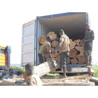 pine wood logs for sale thumbnail image
