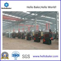 Hydraulic Vertical Baler with 30t Pressing Force (VM-2)
