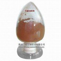 Capsaicin thumbnail image