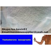Injectable steriods Testosterone Isocaproate cas15262-86-9 thumbnail image