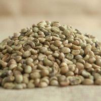 Raw coffee beans thumbnail image