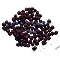 Qualitified Freeze Dried Blueberry origin North America