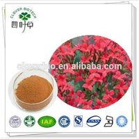 100% Natural Rhodiola Rosea Extract/Salidroside/Rosavin