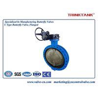 DN750 butterfly valve
