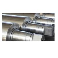Centrifugal Casting High Speed Steel Roll thumbnail image