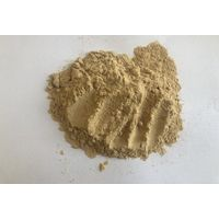 100% Natural Suanzaoren Jujuba Seed Extract Spine Date Seed Extract Ziziphis Pinosae Extract Saponin