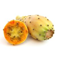wholesale supplier of prickly pear oil