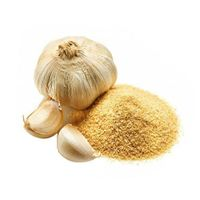 Garlic Powder with high quality from Viet Nam